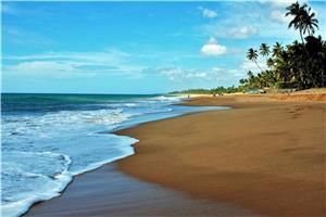 Šrilanka II 2019